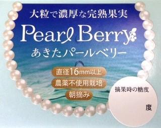 MS_PEARL.JPG